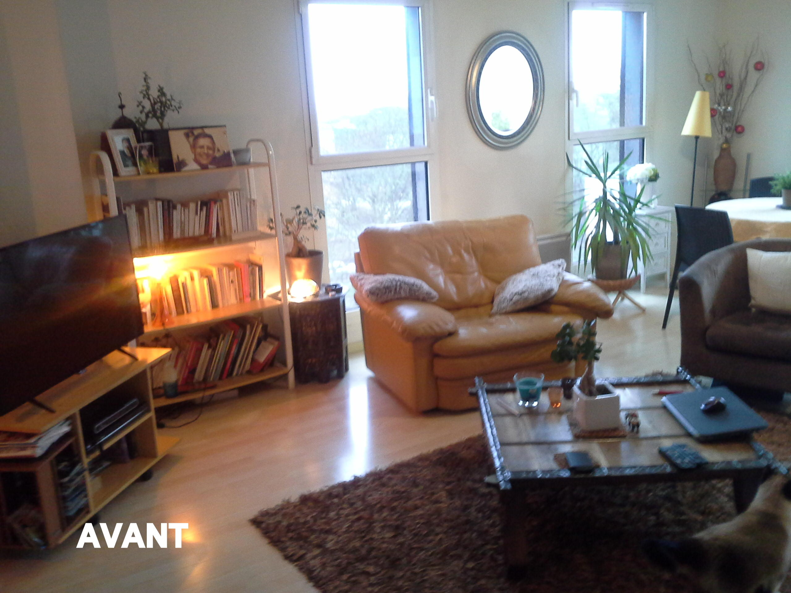 appartement-vegetal-min10ral-ethnique-Lille01