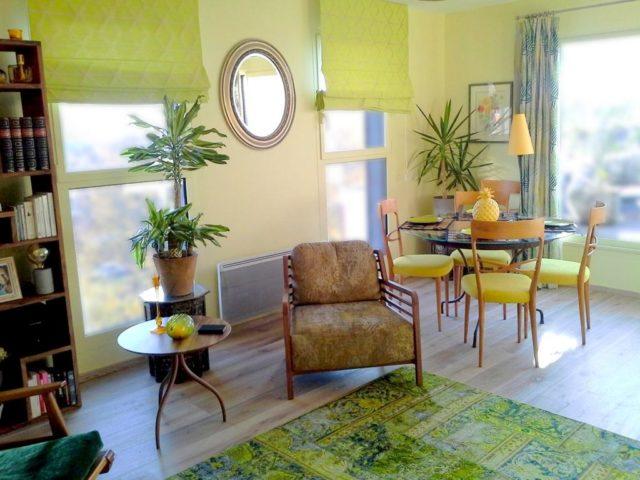 appartement-vegetal-mineral-ethnique-Lille2
